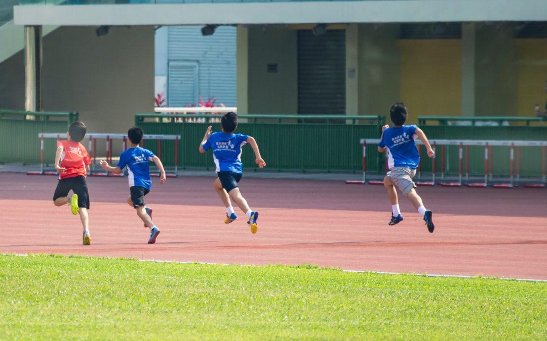 Le sport pour toutes et tous à l'école